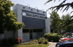 Seattle Veterinary Specialists