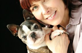 VCA Bay Area Veterinary Specialists
