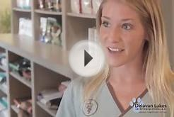 Veterinary Clinic Introduction Video